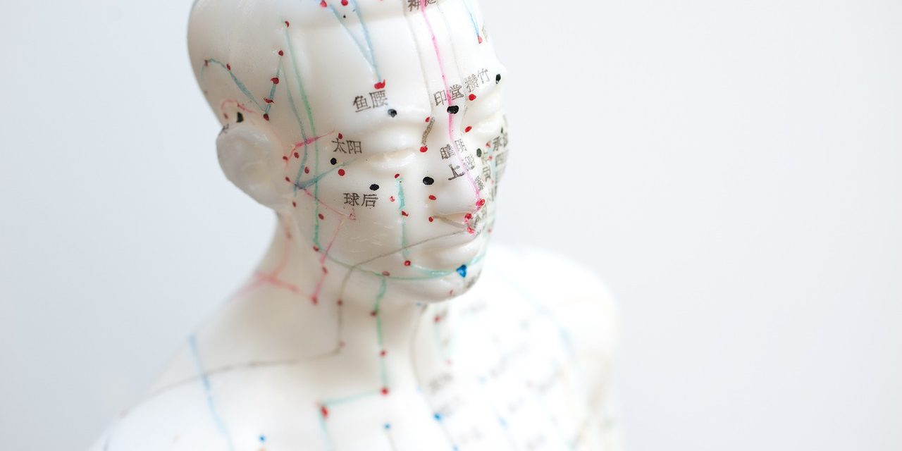 acupuncture-IntegrativeMedicine-EUROCAM
