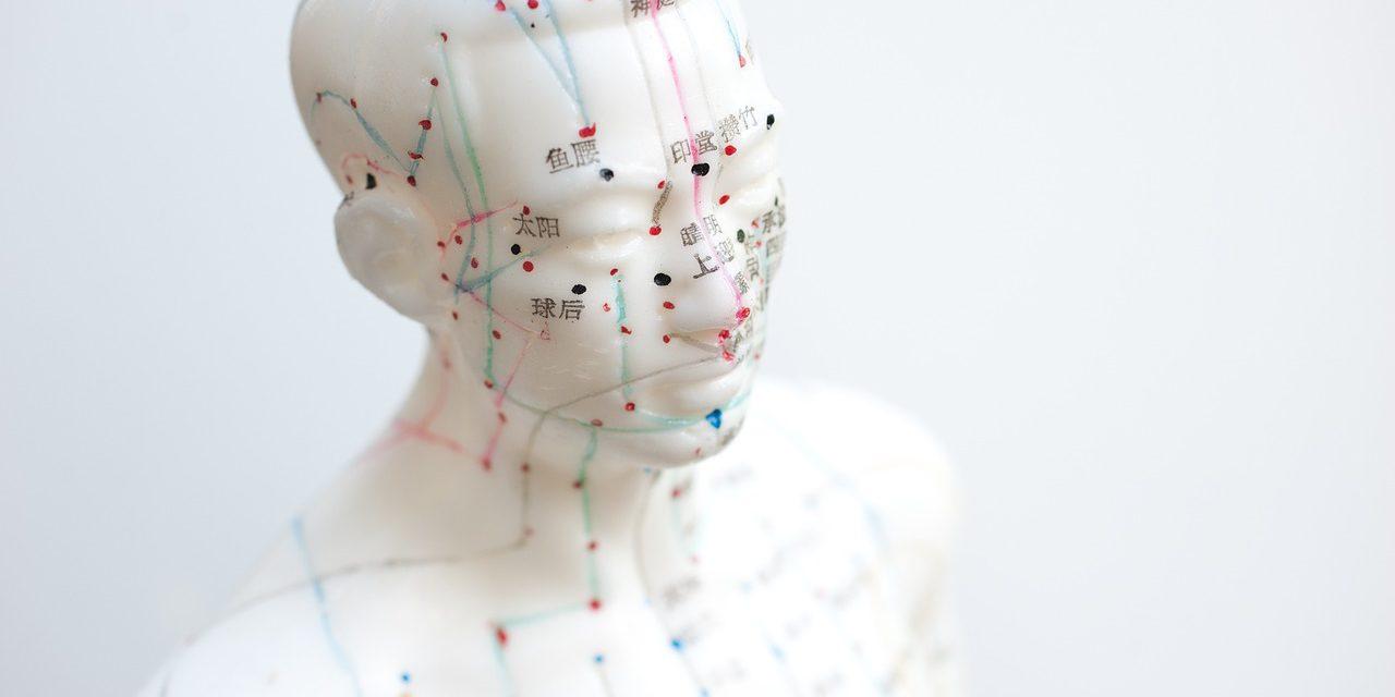 acupuncture-IntegrativeMedicine-EUROCAM